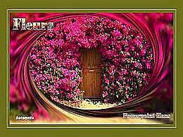 diaporama pps Fleurs