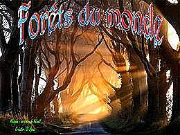 diaporama pps Forêts du monde