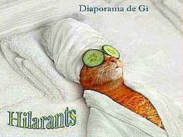 diaporama pps Hilarants