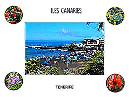 diaporama pps Iles Canaries Tenerife – Espagne