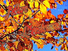 diaporama pps J'adore l'automne