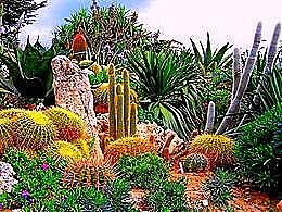 diaporama pps Jardin exotique – Monaco