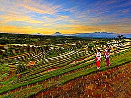 diaporama pps Jatiluwih rice terrace – Philippines