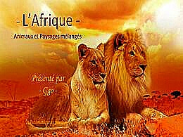 diaporama pps L'Afrique animaux et paysages mélangés