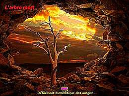 diaporama pps L'arbre mort