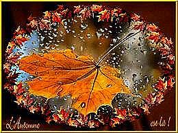diaporama pps L'automne est là
