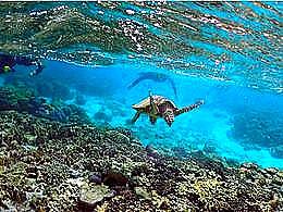 diaporama pps La barrière de corail