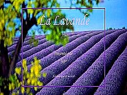 diaporama pps La lavande 2