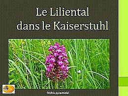 diaporama pps Le Liliental – Allemagne