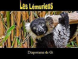 diaporama pps Les lémuriens