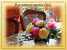 diaporama pps Les natures mortes bis