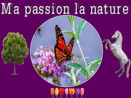 diaporama pps Ma passion la nature