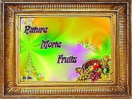 diaporama pps Nature morte – Fruits