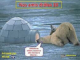 diaporama pps Nos amis drôles 39