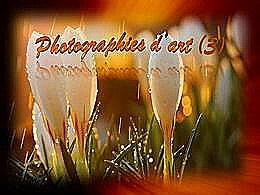 diaporama pps Photographies d'art 3