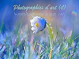 diaporama pps Photographies d'art 4