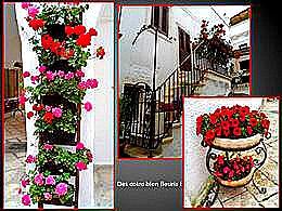diaporama pps Souvenirs de Pouilles 2 – Italie