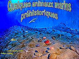 diaporama pps Quelques animaux marins préhistoriques