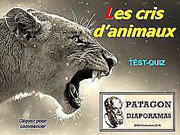 diaporama pps Quiz cris d'animaux
