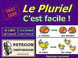diaporama pps Quiz pluriels