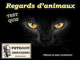 diaporama pps Quiz regards des animaux