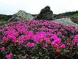 diaporama pps Randonnée dans le massif de Ciucas