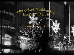 diaporama pps Silhouettes scintillantes à travers la nuit