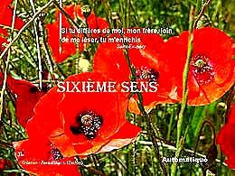 diaporama pps Sixième sens – Grand corps malade
