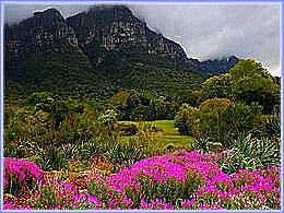 diaporama pps Sudàfrica parques y jardines