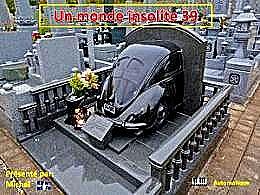 diaporama pps Un monde insolite 39