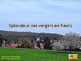 diaporama pps Vergers en fleurs