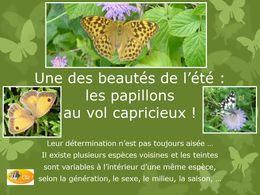 diaporama pps 40 papillons de France