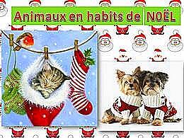diaporama pps Animaux en habits de Noël
