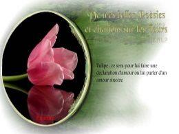 diaporama pps Poésies et citations sur les fleurs