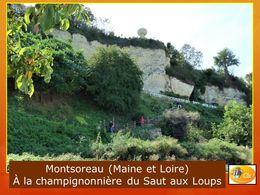 diaporama pps Champignonnière de Montsoreau