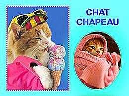 diaporama pps Chat chapeau