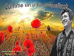 diaporama pps Comme un p'tit coquelicot