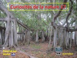 diaporama pps Curiosités de la nature 17