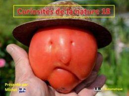 diaporama pps Curiosités de la nature 18
