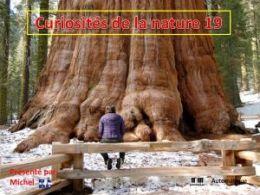 diaporama pps Curiosités de la nature 19