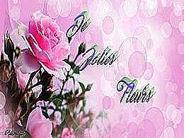 diaporama pps De jolies fleurs