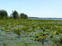 diaporama pps Dobrogea 13 – Delta du Danube