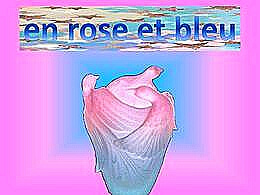 diaporama pps En rose et bleu