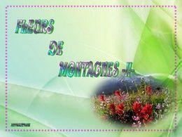 diaporama pps Fleurs de montagnes II