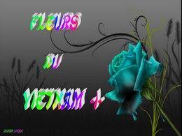 diaporama pps Fleurs du Vietnam I