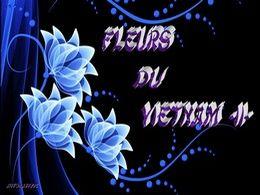 diaporama pps Fleurs du Vietnam II