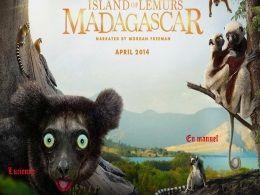 diaporama pps Ile de Madasgascar et sa faune