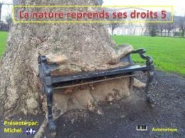 diaporama pps La nature reprend ses droits 5