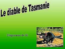 diaporama pps Le diable de Tasmanie