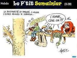 diaporama pps Le p'tit semainier 20 2019